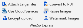 WinZip Express for Outlook message options