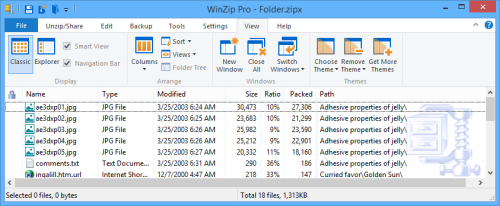 WinZip using the Classic style with the Details view