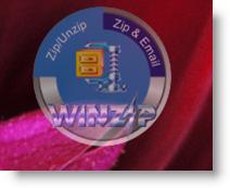 WinZip Gadget is 60% opaque